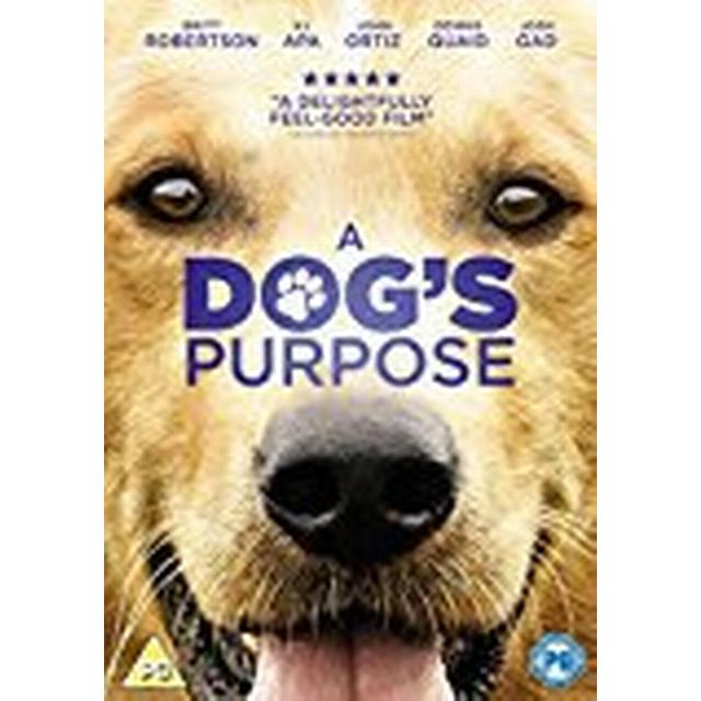 A Dog's Purpose [DVD] [2017]